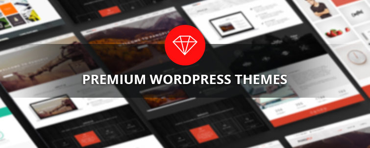 Why should we pay for premium wordpress themes
